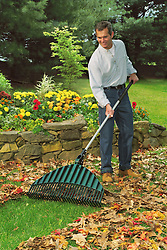 Man raking leaves in autumn