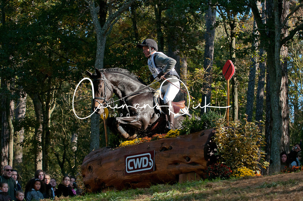 Jung Michael (GER) - Rocana World Championship Young Eventing Horses 6 years<br /> Le Lion d'Angers 2011<br /> &copy; Hippo Foto - Christophe Bricot
