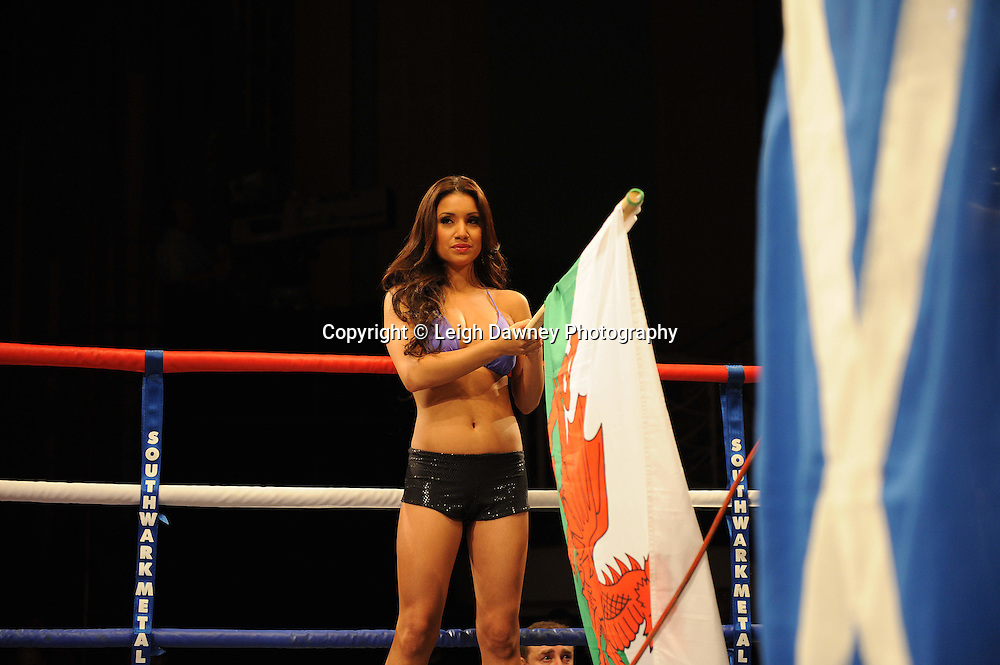 Ring Girls at The Troxy, Limehouse, London, 16th October 2010. Frank Maloney Promotions © Photo credit: Leigh Dawney
