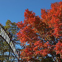 New England walk in the park at Green Hill Park in Worcester, MA featuring stunning red fall colors on a beautiful October perfect autumn day. The urban greenspace provides local recreation and is located atop one of Worcester's seven main hills. The public park is home to the Massachusetts Vietnam Veterans' Memorial Green Hill Park photos are available as museum quality photography prints, canvas prints, acrylic prints or metal prints. Prints may be framed and matted to the individual liking and room decor needs:<br />