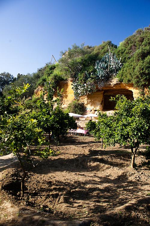 Agrigento, Valle dei Templi. Giardino della Kolymbetra. Proprietà FAI.  ©2012 Vince Cammarata | FOS
