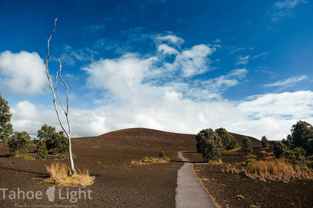 Desolation trail at Volcanoes National Park on the big island of Hawaii.  One of my main goals was seeing lava moving down to the sea, unfortunately at present the lava flow on Hawaii is tiny and on inaccessible private property.