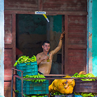 HAVANA, CUBA - JULY 18 : A Cuban fruit seller in old Havana street on July 18 2016. The historic center of Havana is UNESCO World Heritage Site since 1982.