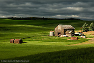 Barn among rolling hills of wheat and dramatic storm clouds, Palouse region of eastern Washington.