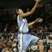2006 NCAA Women's Basketball