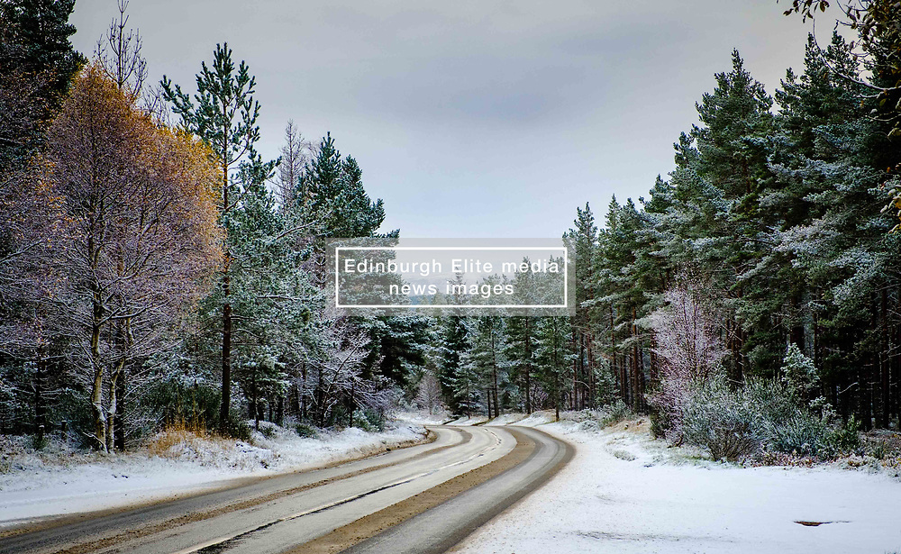 Snow on the A938 near Carrbridge, Highlands of Scotland<br /> <br /> (c) Andrew Wilson | Edinburgh Elite media