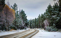 Snow on the A938 near Carrbridge, Highlands of Scotland<br /> <br /> (c) Andrew Wilson | Edinburgh Elite media
