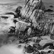 Rocky Shoreline - Pacific Grove, CA - Black & White