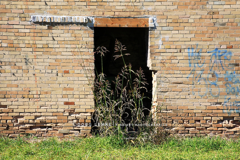 Gone To Seed, Very Tall Grass In The Doorway Of An Abandoned Brick Barn In Autumn; Southwestern Ohio, USA