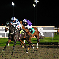 Captain Cat and James Doyle winning the 6.30 race