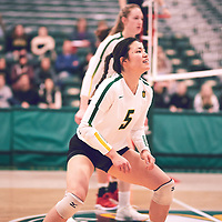 3rd year setter, Satomi Togawa (5) of the Regina Cougars during the Women's Volleyball home game on Fri Jan 18 at Centre for Kinesiology, Health & Sport. Credit: Arthur Ward/Arthur Images
