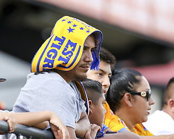 July 8, 2018 - Round Rock, USA - A Tigres fan looks on during a Liga MX friendly match between Tigres and Pachuca at Dell Diamond in Round Rock, Texas, on July 8, 2018. (Credit Image: © Scott W. Coleman via ZUMA Wire)