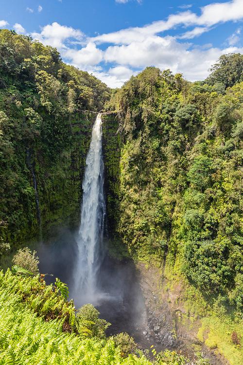 Akaka Falls near Hilo on  the Big Island, Hawaii. Winter. Afternoon.
