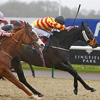Priestley's Reward and Luke Morris winning the 12.00 race