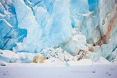 Svalbard #6 2009