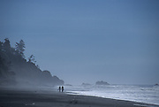 Walking on the Beach, Beach, Ocean, Pacific Ocean, Oregon Coast, Backpacking, Hike, Walk, Walking, Backpacker, Olympic, Olympic National Park, Washington