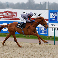 Gabrial The Duke and Jim Crowley winning the 2.00 race