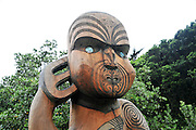 New Zealand, North Island, Auckland pohutukawa glade walk. Maori carved wood sculpture.