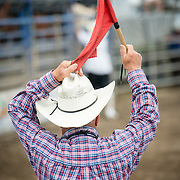 One of the rodeo organizers hold a red flag before the beast is released.