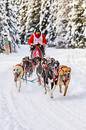Musher John Erhart competing in the Fur Rendezvous World Sled Dog Championships at Goose Lake Park in Anchorage in Southcentral Alaska. Winter. Afternoon.