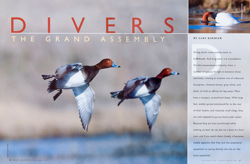 Ducks Unlimited, Jul-Aug 2001