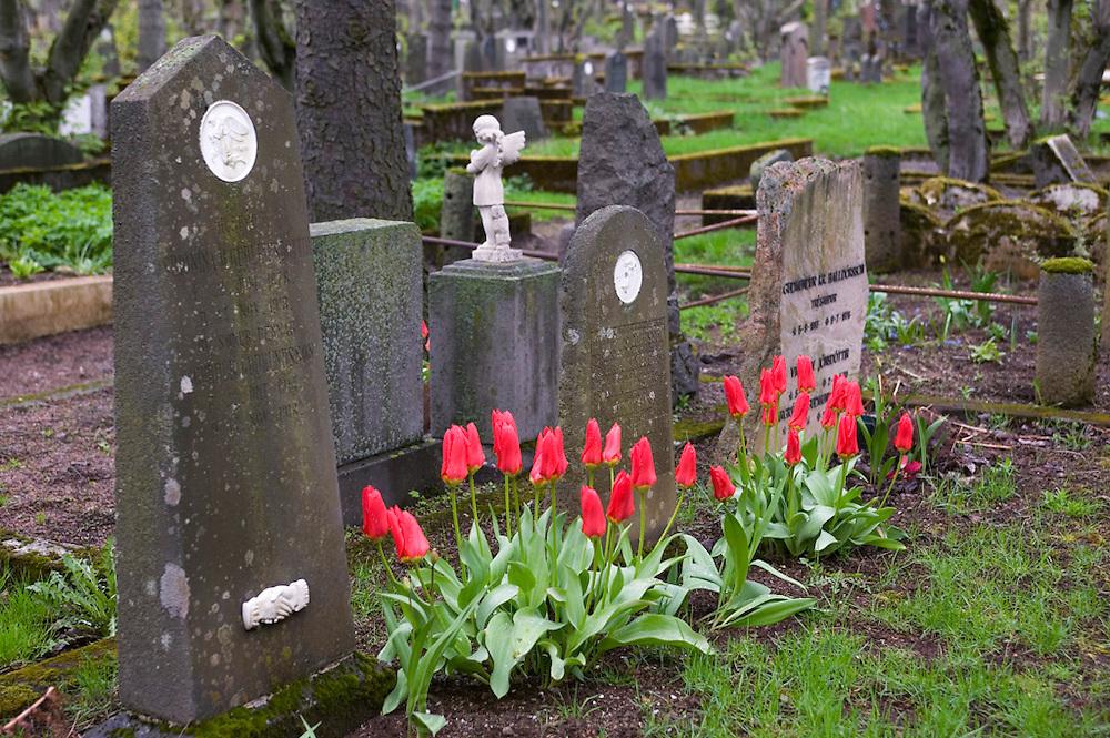 Holavallagardur Cemetery, Reykjavik, Iceland.