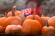 Rain-drenched pumpkins look especially alluring on the display table. The &quot;Open&quot; sign at a rural farm stand invites those passing by to stop for their annual fill of pumpkin orange. <br /> A painterly effect applied in post processing adds texture and enhances the dreamy, liquid atmosphere.<br /> <br /> For IMAGE LICENSING just click on the &quot;add to cart&quot; button above.<br /> <br /> Fine Art archival paper prints for this image as well as canvas, metal and acrylic prints available here:<br /> https://2-julie-weber.pixels.com/featured/trough-the-window-julie-weber.html
