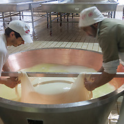 Cutting the curd for Parmigiano Reggiano