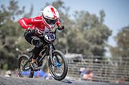 #210 (CHRISTENSEN Simone Tetsche) DEN  at Round 9 of the 2019 UCI BMX Supercross World Cup in Santiago del Estero, Argentina