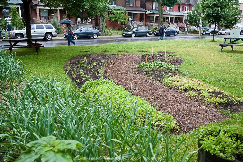 Footprint garden at FoodShare.