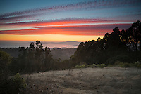 Tilden Regional Park Sunset, Berkeley Hills, California