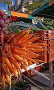 Rennes, FRANCE,  Carrots and Radishes, on display,  at the Saturday Morning Market,  Brittany.  Saturday  26/09/2009   [Mandatory Credit Peter Spurrier Intersport Images] Street Photo.