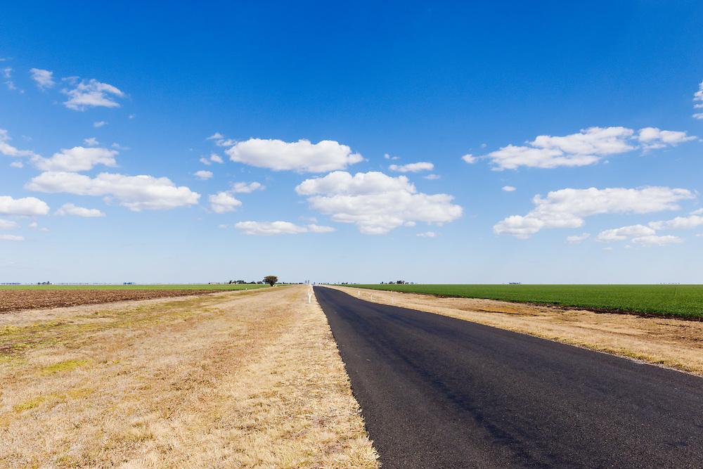 Rural road next  green early crop  field under blue sky with cumulus clouds near Jimbour Queensland, Australia