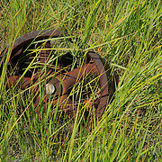 Rusted Iron Flywheel - Bodie, CA