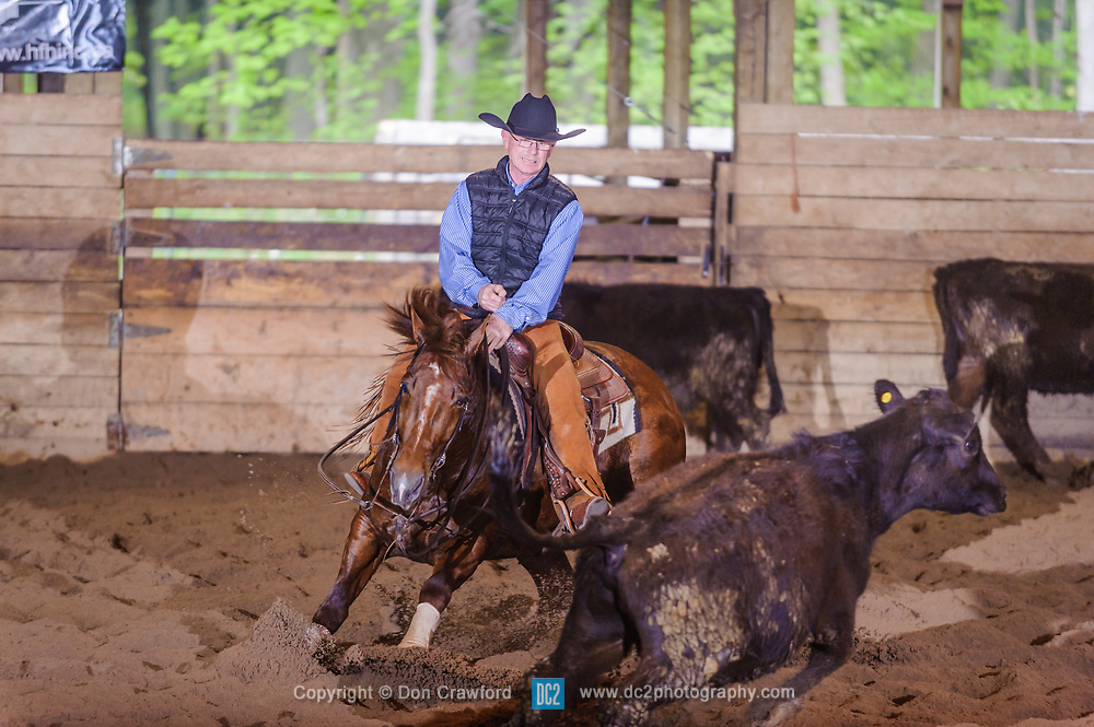 May 21, 2017 - Minshall Farm Cutting 4, held at Minshall Farms, Hillsburgh Ontario. The event was put on by the Ontario Cutting Horse Association. Riding in the 5,000 Novice Horse Class is Brian Kelly on Oklahoma Redneck owned by Ronald Stelzl.
