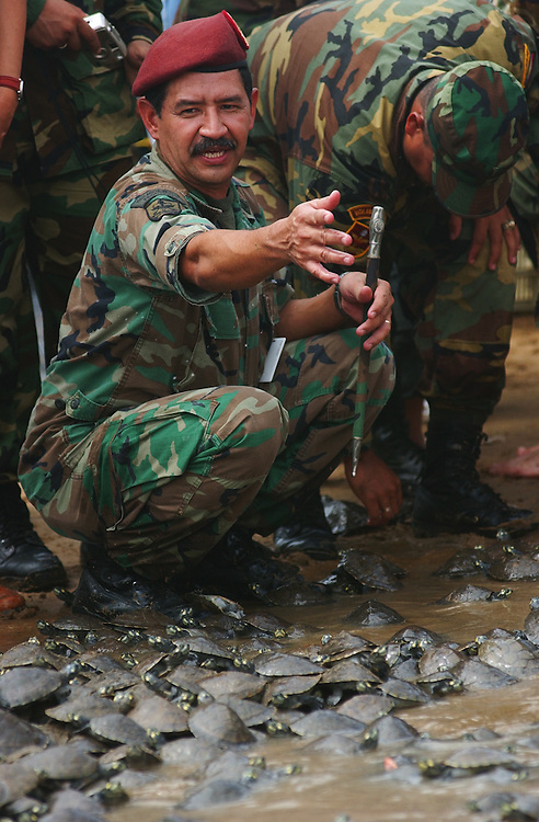 Members of the Venezuelan National Guard help to free thousands of Arrau turtles.  The turtles were released in the Orinoco river as part of a 10 year program that has released over 165,000 turtles.  The Venezuelan government says the program holds the world record for number of endangered species released into the wild.  The turtles are threatened by a variety of predators, including humans who eat their eggs and meat.