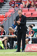 February 12, 2017: Western Sydney Wanderers coach Tony POPOVIC screams instructions to his team at Round 19 of the 2017 Hyundai A-League match, between Western Sydney Wanderers and Central Coast Mariners played at Spotless Stadium in Sydney.