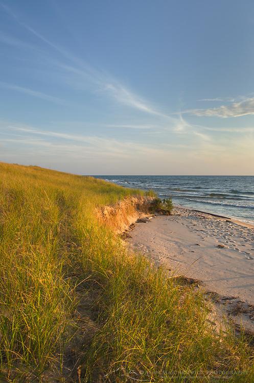 Dunes, Ludington State Park Michigan