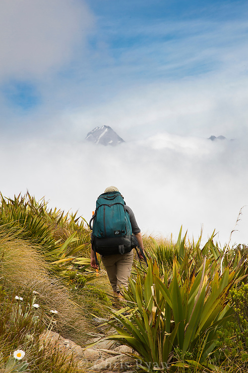 Hiker on the Routeburn Track, South Island, New Zealand