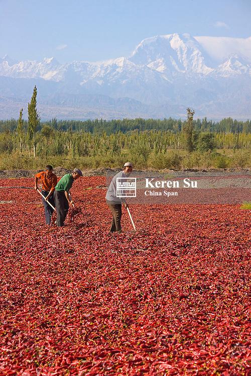 Drying red pepper, Mt Kunlun in the distance, near Kashgar, Xinjiang, China