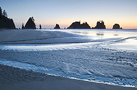 Twilight over Shi Shi Beach, seastacks of Point of the Arches are in the distance. Olympic National Park, Washington.