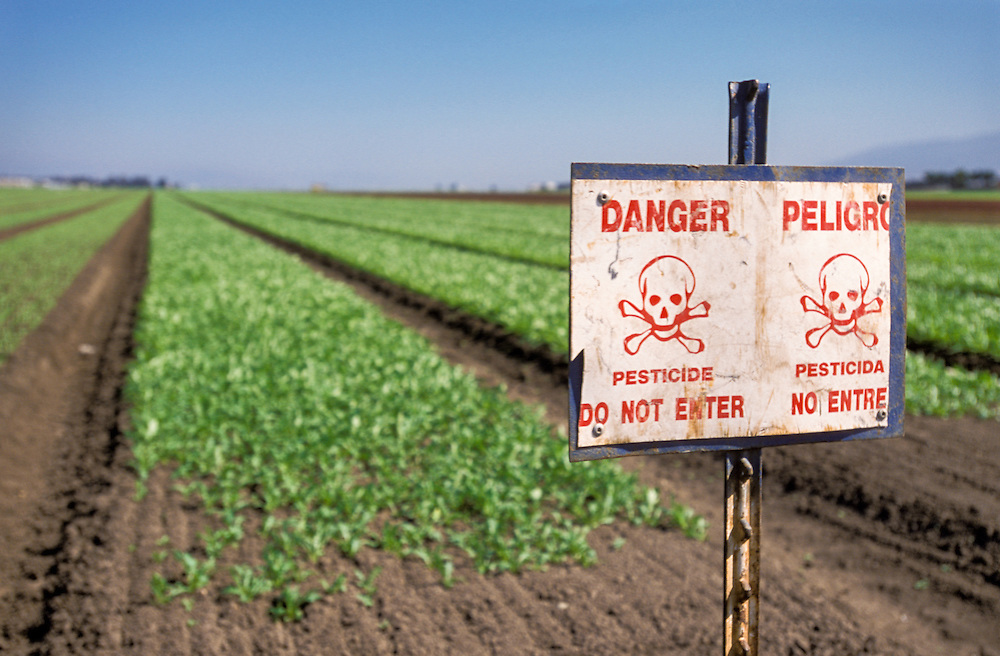 SALINAS, CALIFORNIA - Pesticide warning sign