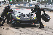 March 12-16, 2019: Mobil 1 12 hours of Sebring. #47 Precision Performance Motorsports (PPM) Lamborghini Huracan GT3, GTD: Don Yount, Brandon Gdovic, Lawson Aschenbach