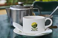 Kenya, Kericho county, Kericho, tasse de thé au Tea hotel // Kenya, Kericho county, Kericho, tea cup at Tea hotel