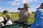 "CC Africa Afro Ventures' luxurious ""Andersson's Africa"" Safari. Morning Game drive around Etosha Pan. Curious lone elephant bull."