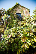 Historic home along the Battery in Charleston, SC overwhelmed by vegetation.