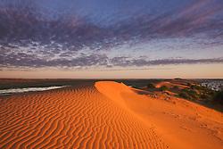 Unusual flood water between dunes seen from 'Big Red', Simpson Desert's biggest dune, Simpson Desert, South Australia, Australia