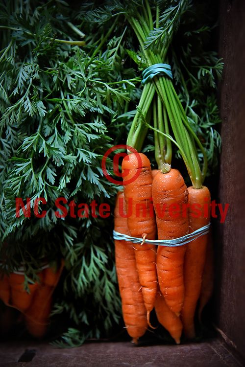 Carrots available to Creekside Farms' CSA clients.