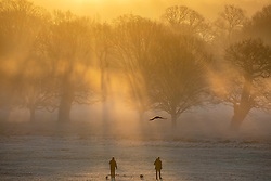 © Licensed to London News Pictures. 18/01/2020. London, UK. Walkers enjoy the sun rise through the trees this morning as dog walkers and families enjoy a wonderful frosty and misty morning in Richmond Park, London. Forecasters predict a cold week ahead as Richmond Park issued a warning for ice after the previous day's high rain fall which could lead to increased slippery conditions for walkers and road users. Photo credit: Alex Lentati/LNP