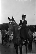 "09/08/1962<br /> 08/09/1962<br /> 09 August 1961<br /> RDS Horse Show, Ballsbridge Dublin, Thursday. <br /> Picture shows """"Three Cheers"", hunter mare, owned by Miss Molly D. Wallace, Dunbarton House, Gilford, Portadown, Co. Armagh."